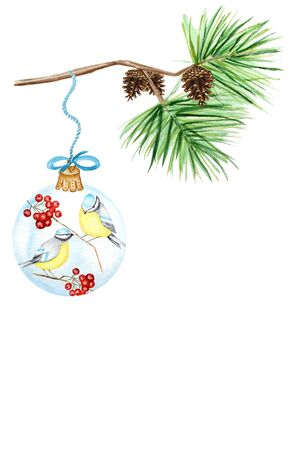Christmas Glass Ball with red rowan, winter birds Blue tit Greeting card, poster concept of pine branches and cones, on white background, watercolor hand drawn illustration with copy space for text 写真素材