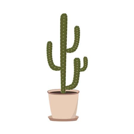 Cactus in a flower pot Фото со стока