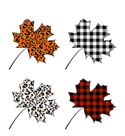 Set of maple leaves Çizim