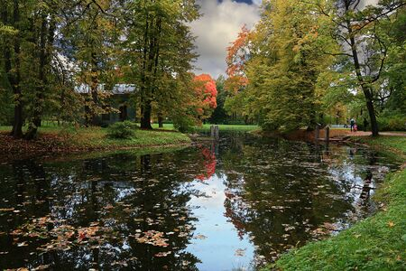 very cold: Russia, St.Petersburg Petersburg, autumn in Gatchina Park, very cold and rainy September