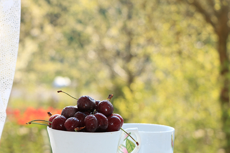 A cup of cherries on a sunny table in a flowered garden, selective focus. Sweet cherry with droplets and a branch of lilac in the background in the garden, the effect of natural bokeh in the background