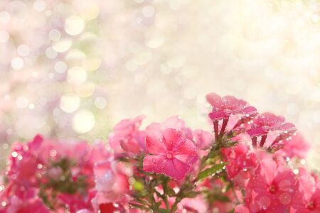Abstract floral spring defocused background in pastel colors with soft focus and bokeh. Banner for the screen, a beautiful bright greeting card or invitation, seasonal Easter concept Foto de archivo - 141426942