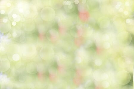 Abstract floral spring defocused background in pastel colors with soft focus and bokeh. Banner for the screen, a beautiful bright greeting card or invitation, seasonal Easter concept Foto de archivo - 141426947