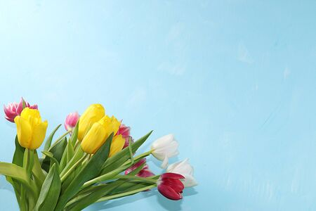 Creative layout with tulips on a blue background, minimal holiday and spring concept. Greeting card, spring banner for the screen, happy birthday, wedding, place for text, Foto de archivo - 141916245