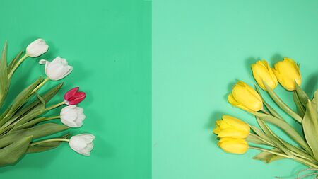 Creative layout with tulips on a green background, minimal holiday and spring concept, geometry. Greeting card, spring banner for the screen, happy birthday, wedding, place for text Foto de archivo - 142454807