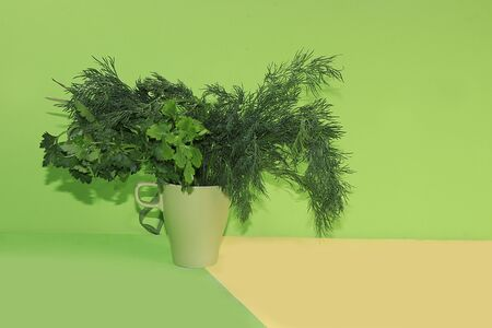 Dill and parsley on a green background. The concept of healthy and natural foods to enhance immunity, healthy lifestyles and weight loss, vitamins, diet food. banner