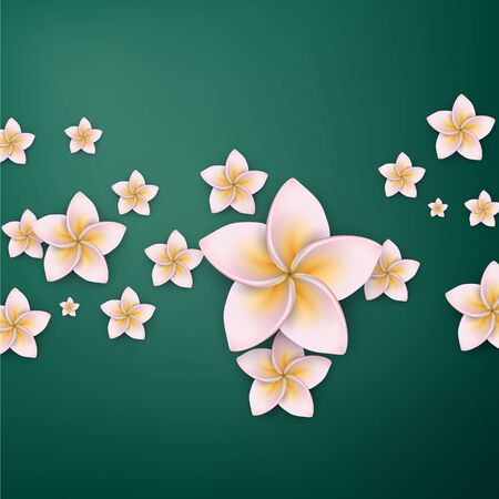 Composition of pink frangipani (Plumeria) flowers.  Stock Vector - 17658169
