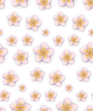 Seamless pattern of frangipani (Plumeria) flowers. Detailed vector background. Eps10.