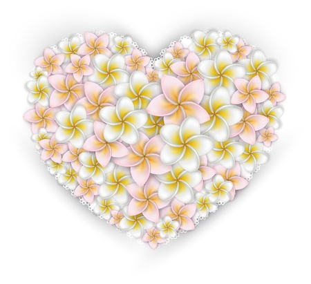 Plumeria (frangipani) flowers over white paper heart. Vector. Eps10.
