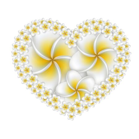 Plumeria (frangipani) flowers heart, isolated on white background. Vector. Eps10.