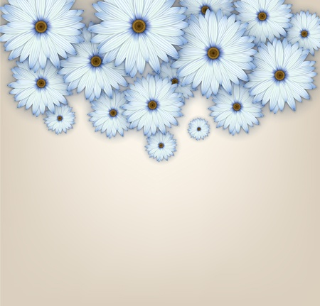 Blue daisy flowers field background.