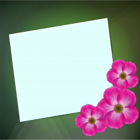 Greeting card on a green background with a flowers.