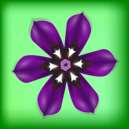 Single purple flower on green. Detailed vector background. Illustration