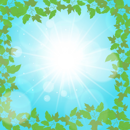 summer background. edge of the leaf. Vector Eps 10