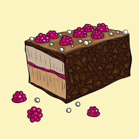 Piece of delicious chocolate cake with raspberries on yellow background. Vector illustration.