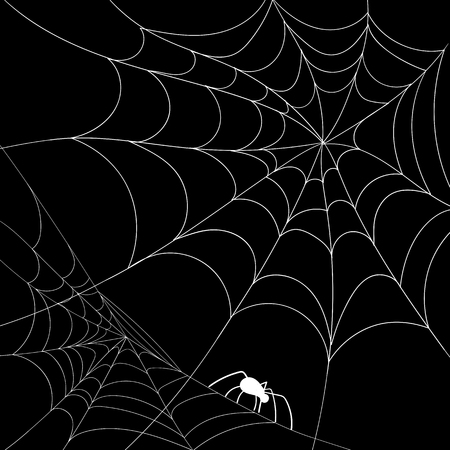Black hand-drawn halloween background with white spiderweb and spider. Vector paper illustration.