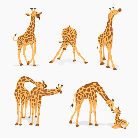 Set of cute cartoon giraffes isolated on white background. Vector design template for kids. Print for notebook, wallpaper, fabric, textile.