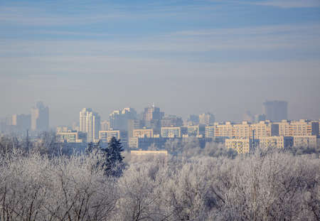frosty morning: City distance and the trees close. Snowy frosty morning haze. Stock Photo