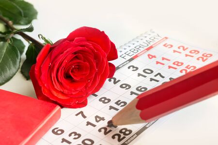 Valentines card. Red roses lay on the calendar and red pencil point date of February 14, Valentines day. Close up. Stock Photo