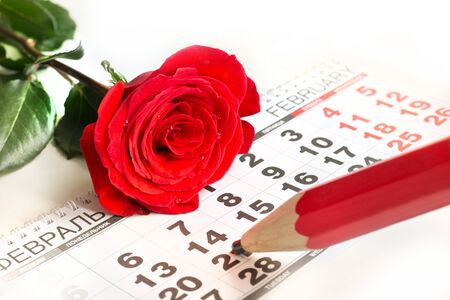 pencil point: Valentines card. Red roses lay on the calendar and red pencil point date of February 14, Valentines day. Close up. Stock Photo
