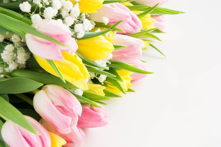Beautiful bouquet of pink and yellow tulip on white. Close up. Copy space.