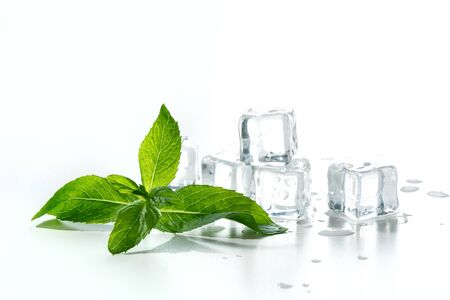 Ice with mint isolated on white.