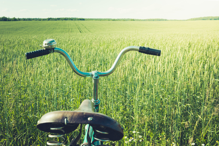 Vintage handlebar with bell on bicycle. Summer day for trip. View of wheat field. Outdoor. Closeup. Detail.