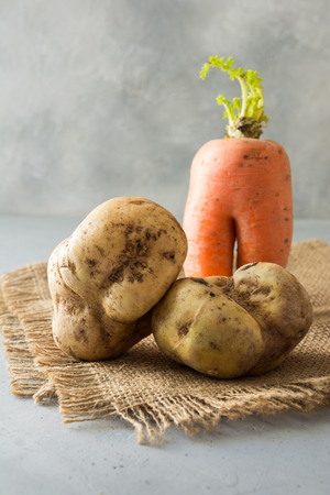 Ugly organic abnormal carrot and potatoes. Space for text. Concept organic vegetables.