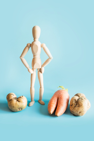 Concept of organic gardening and cultivation of natural vegetables. Wooden doll and large vegetables, potatoes and carrots.