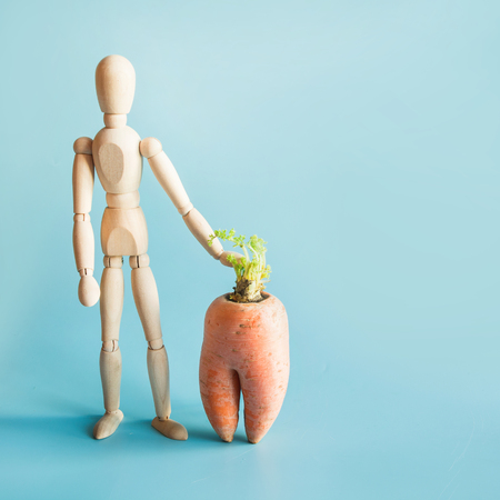 Concept of organic gardening and cultivation of natural vegetables. Wooden doll and big carrot. 版權商用圖片