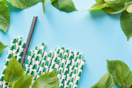 Border of green leaves, paper and metal reusable drinking straw on blue background. Save the planet. Zero waste. Top view with copy space. Stock Photo