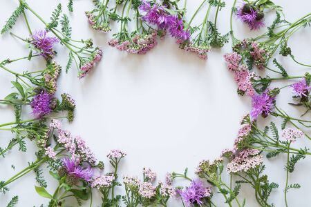 Floral pattern of purple and pink flowers on grey background. Flat lay, top view.