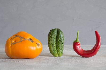 Oddly shaped organic colorful tomato, pepper, cucumber. Concept of organic vegetables.