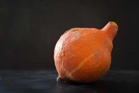 Oddly shaped organic pumpkin on black. Space for text. Concept of organic natural vegetables.