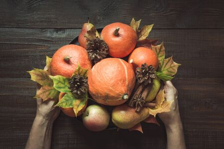 Autumn still life with colorful leaves, ripe orange pumpkins, apples on wooden board. View from above. Horizontal orientation. Centerpieces Thanksgiving.