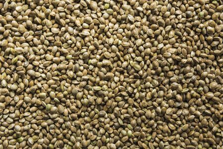 Organic dried hemp seeds as background. Useful protein substitute for vegans and an organic source of vitamins from safe varieties.