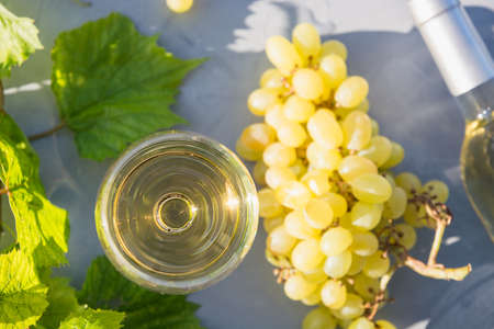 White wine in wineglass, ripe grape on grey table in sunny rays. Close up. Outdoors.