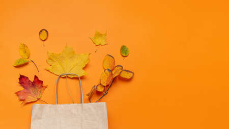 Fall leaves in craft paper bag on orange background. View from above. Concept autumn sale. Banner with copy space.