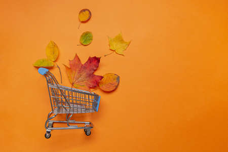 Fall leaves in grocery trolley on orange background. View from above. Concept Autumn sale. Banner with copy space.