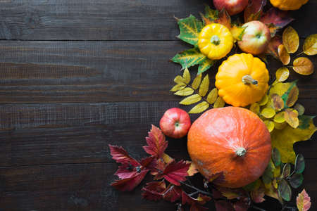 Still life of autumn harvest, pumpkin and colorful maple leaves on wooden board. Thanksgiving Day. Space for text