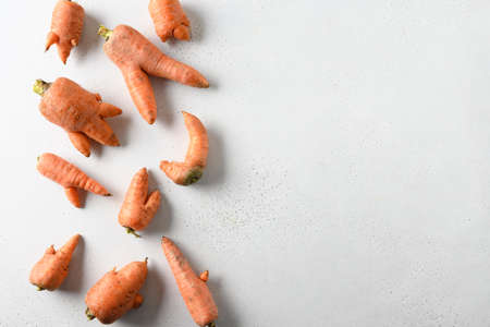 Abnormal ugly organic carrots on white background with copy space. Concept natural vegetables.