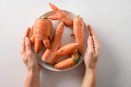 Abnormal ugly organic carrots in plate in womans hand on white table. Natural homegrown vegetables strange shape.