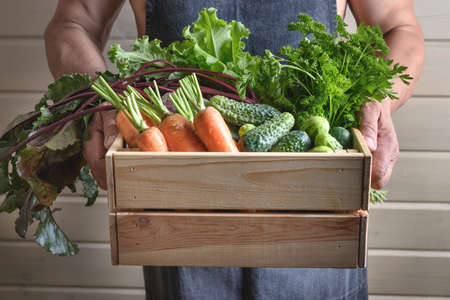 A man holds homegrown vegetables, beets, cucumbers, carrots.