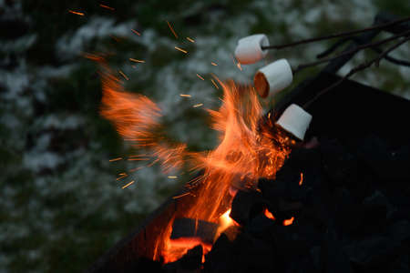 Roasting marshmallow on a fire at the evening.