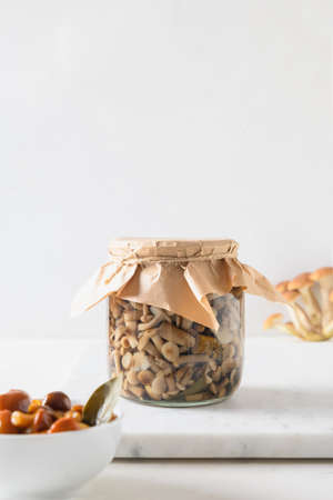 Pickled honey mushrooms in bowl and jar on a white background Standard-Bild