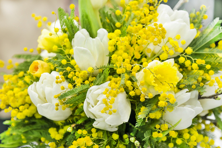 Spring bouquet for the International Women's Day on March 8 from the mimosa of white tulips and daffodils