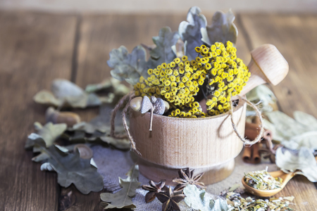 Herbal tea. Dried medicinal plant tansy in a wooden mortar, acorns and oak leaves with cinnamon and cardamom for the preparation of medicinal decoctions, drinks from the herbal collection. Stok Fotoğraf
