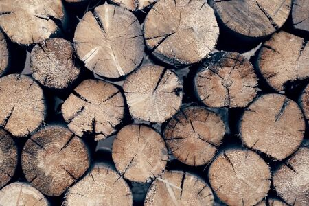 Natural abstract wooden timber background with texture of bundles of logs in rustic style. Raw materials for lumber. Deforestation, ecology and ecosystem