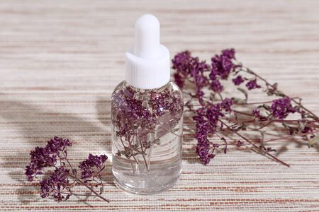 Phytotherapy. Herbal Alternative Medicine. Infusion of a medicinal plant oregano in a bubble with a pipette for health on a table on a beige background. Cosmetic, aromatherapy Zdjęcie Seryjne