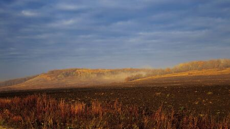 Dramatic scenic autumn rural landscape at dawn outdoors. Yellow-orange forest in a haze of fog on a hill against a dark blue cloudy sky and a plowed field